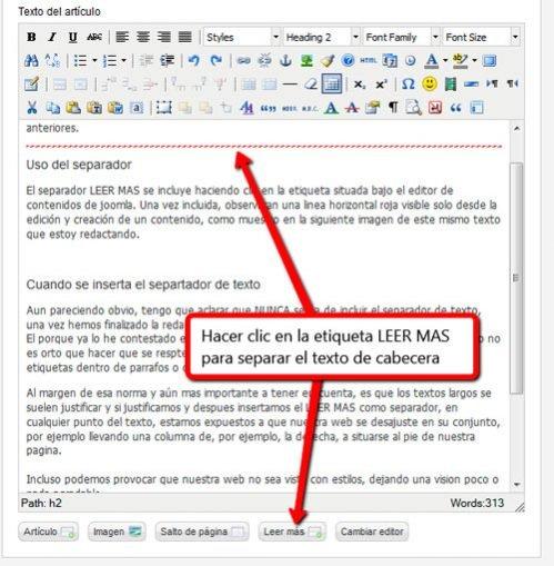 Texto de introducción con separador LEER MÁS